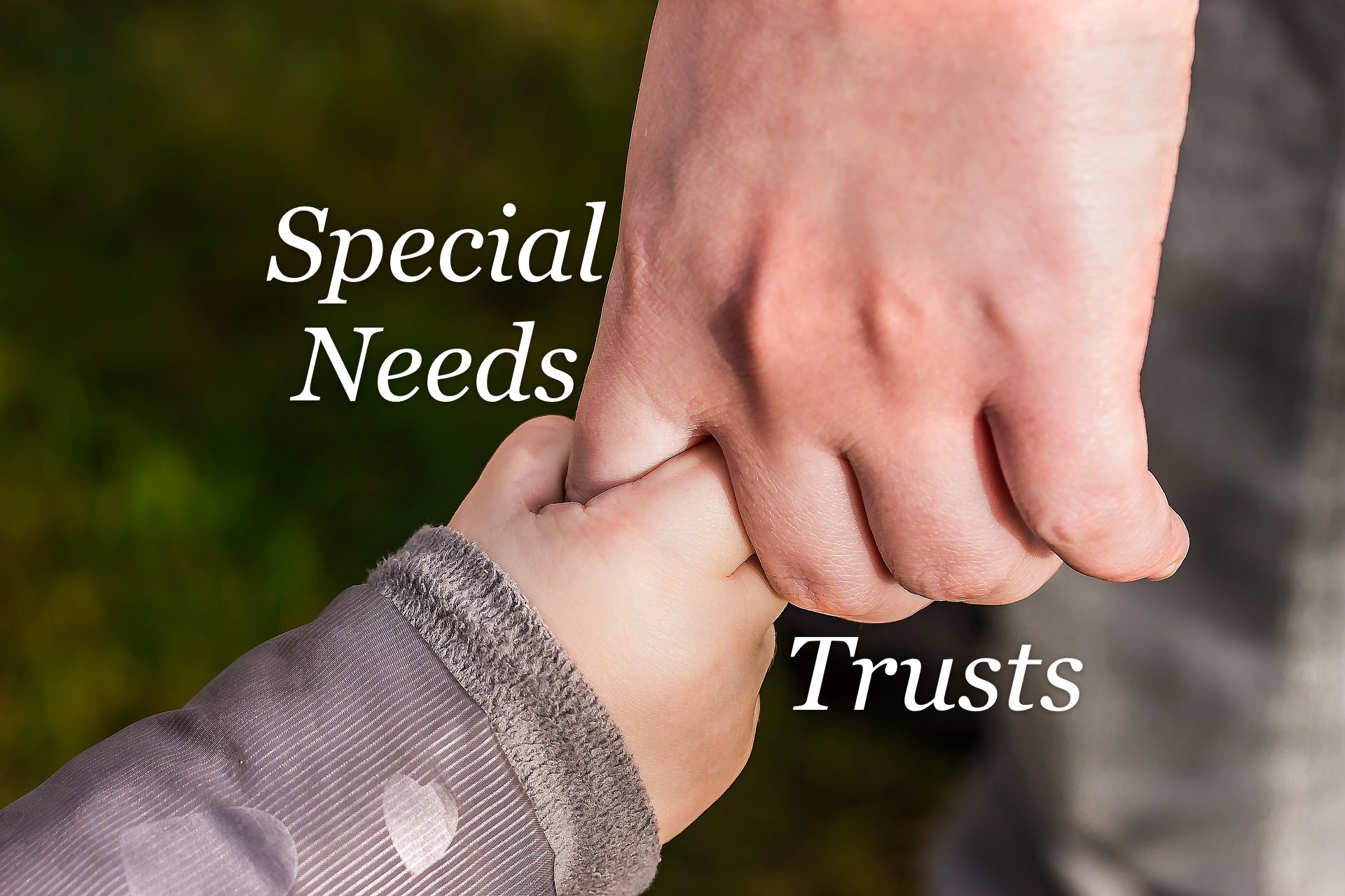 Special Needs Trust | The Special Parent
