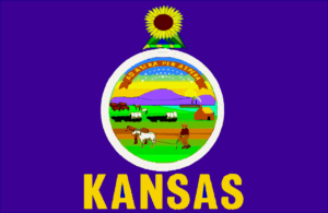Kansas Early Intervention Contact Information